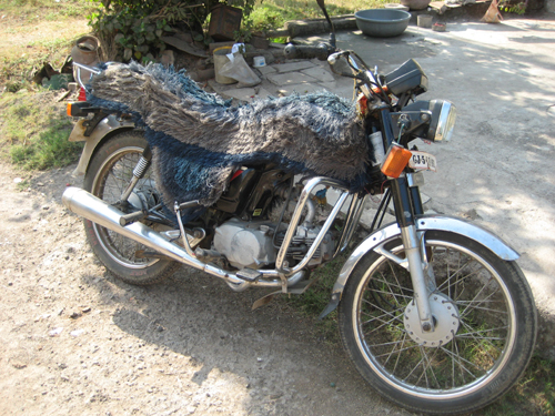 Everybody seems to own one of these - but why the hairy seat?