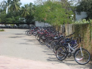 Almost everyone comes to school on a bicycle or moped