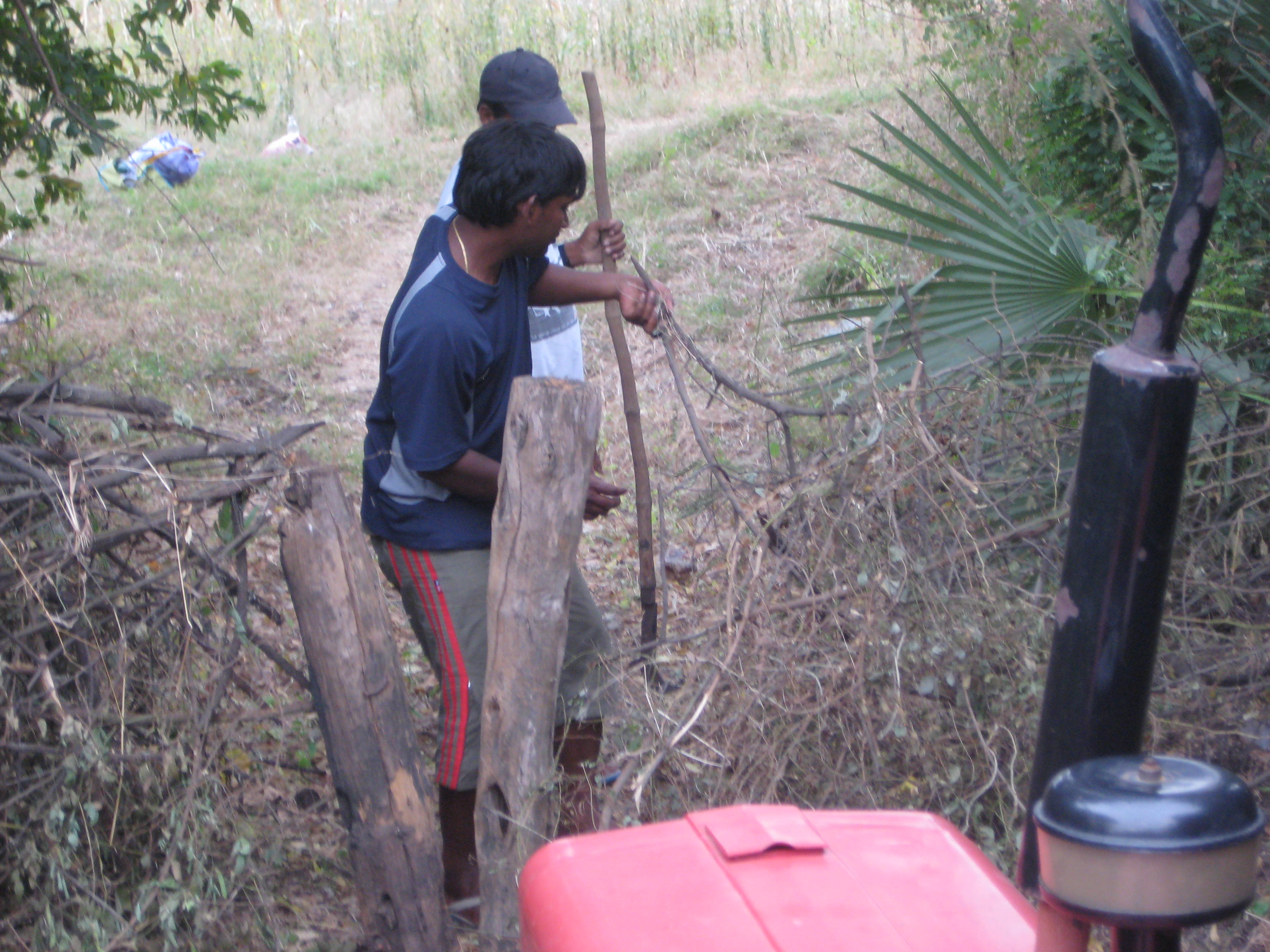Dismantling the thorn bush fences designed to keep out animals